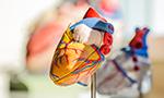 COVID-19 y el corazón [Originalmente publicado en Arq. Bras. Cardiol.]